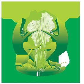 Plateforme Nationale des Organisations Paysannes et de Producteurs Agricoles du Bénin (PNOPPA-Bénin)